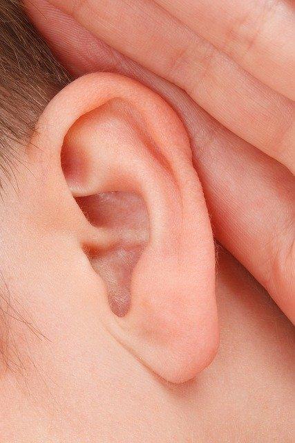 brufne ucho